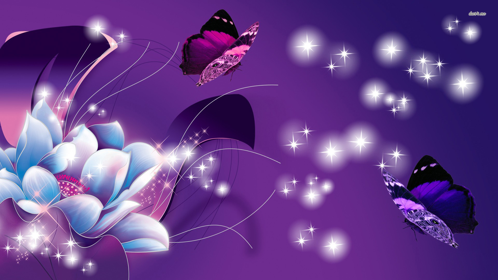 Free Butterfly Wallpapers For Android Posted By Ryan Peltier