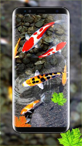 Download 3D Koi Fish Wallpaper HD Fish Live Wallpapers Free