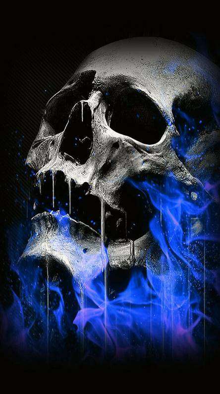 Free Live Skull Wallpapers Posted By John Sellers