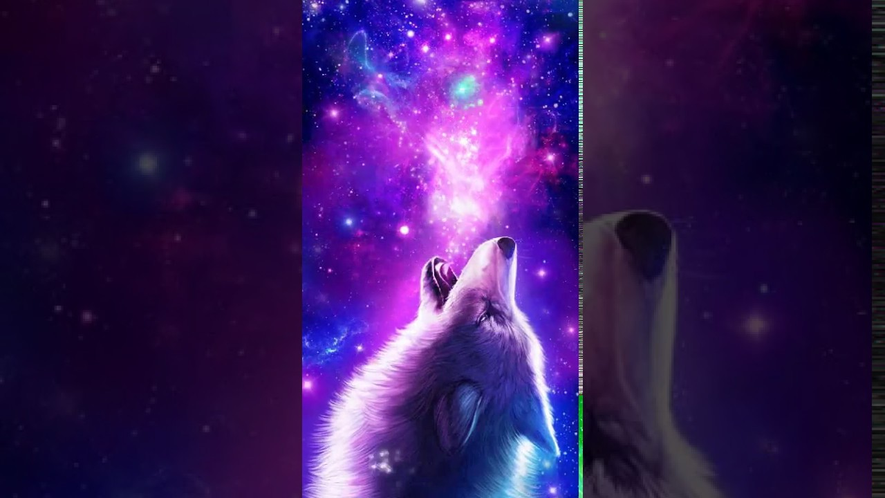 Galaxy Wolf Wallpaper Hd Posted By John Thompson