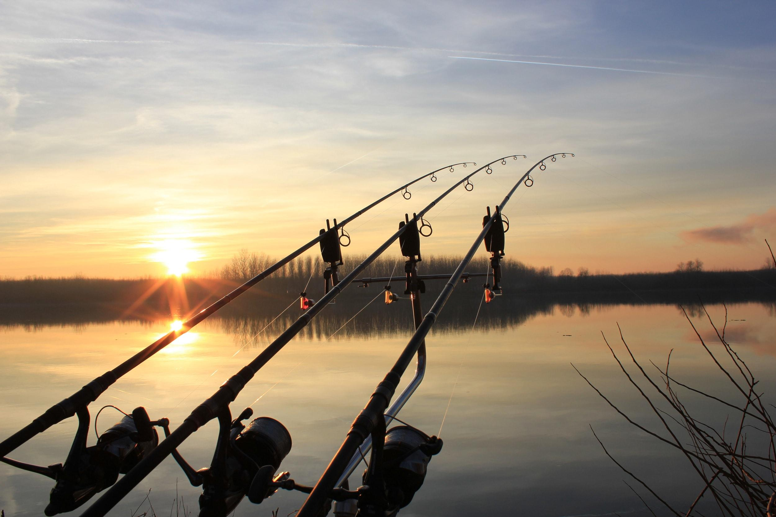 Hd Fishing Wallpapers Posted By Ethan Simpson