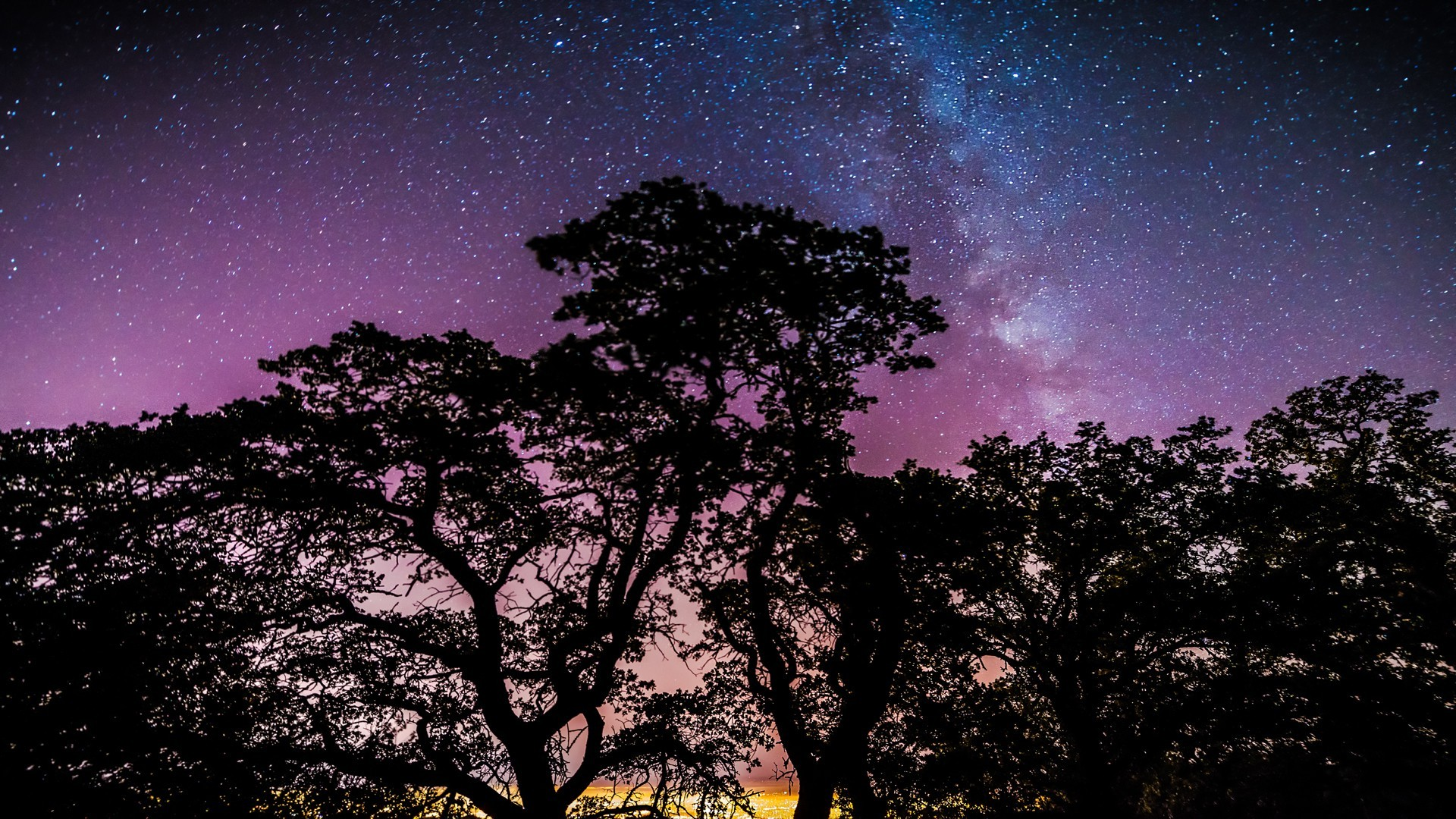 stars Trees Galaxy Wallpapers HD Desktop and Mobile