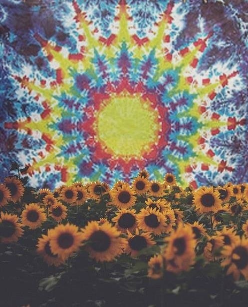 Hippy Tumblr Posted By Ryan Johnson
