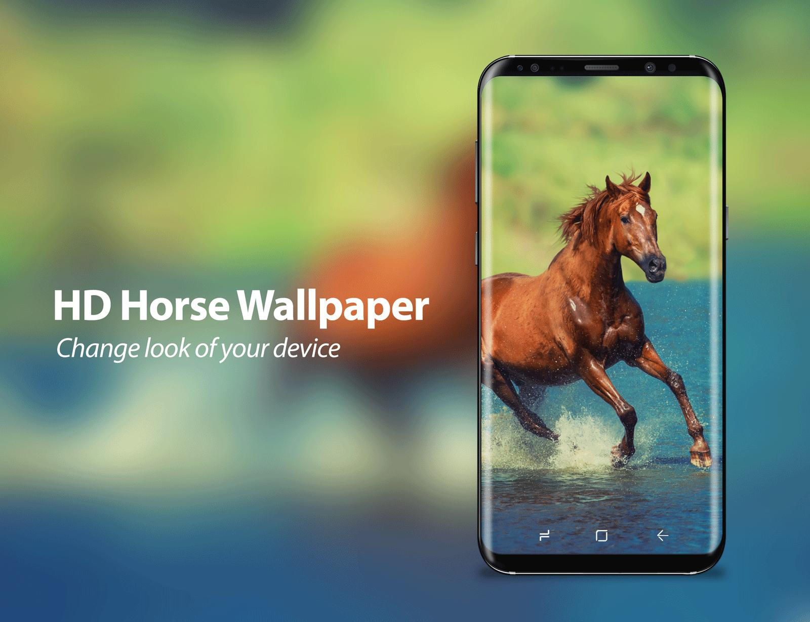Horse Pictures Wallpaper Posted By Michelle Sellers