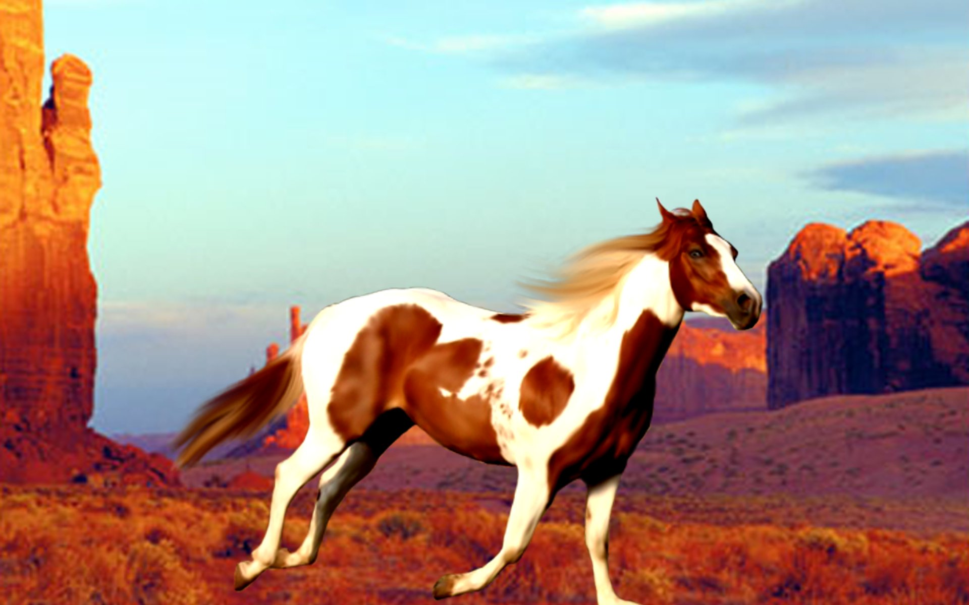 Horse Screensavers Free Posted By Sarah Walker