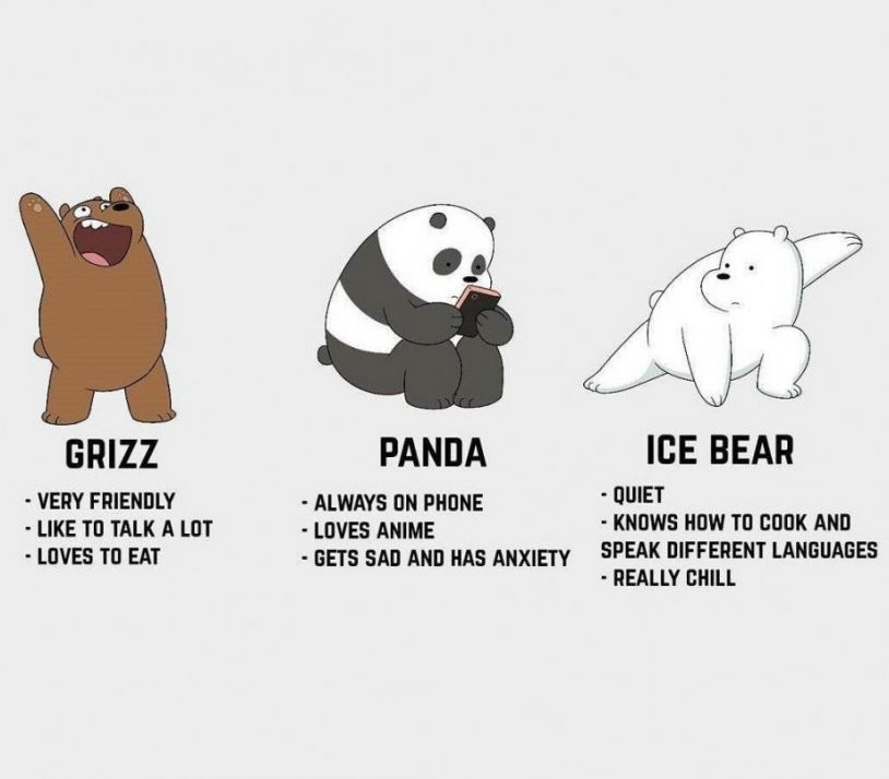 Ice Bear Wallpaper Posted By Zoey Sellers