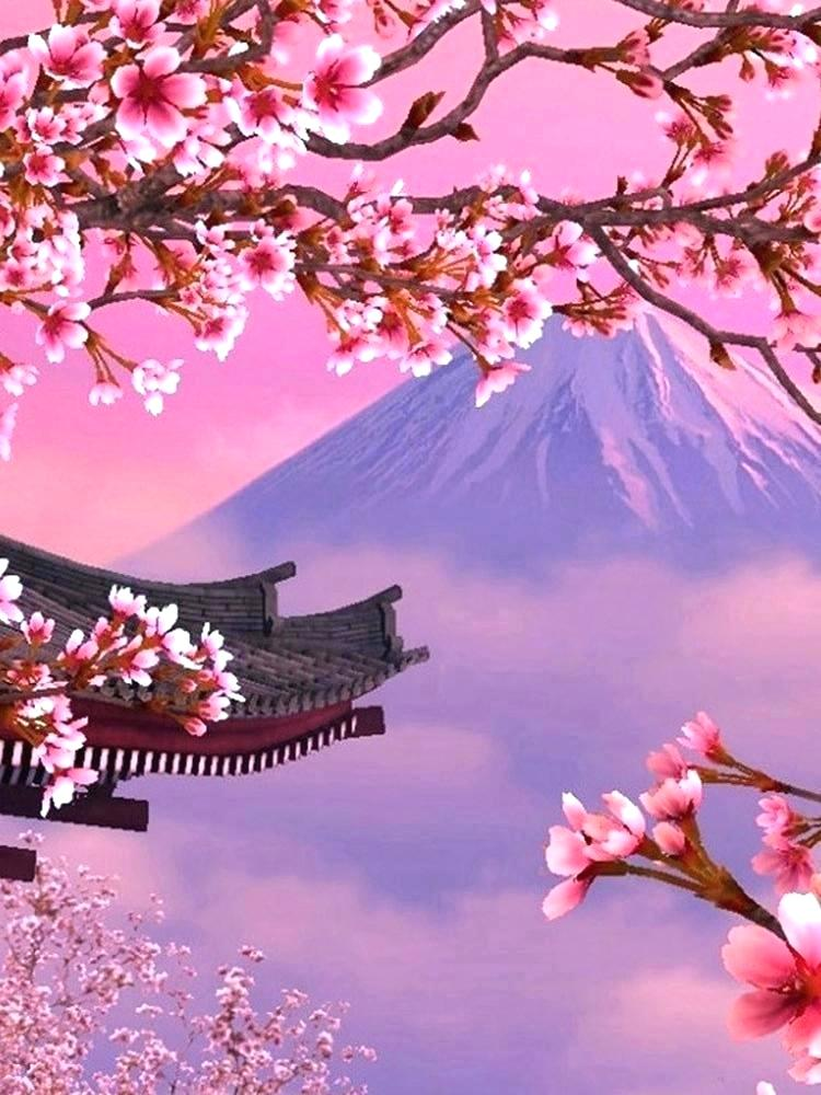 Japanese Cherry Blossom Tree Wallpaper Posted By Christopher Tremblay