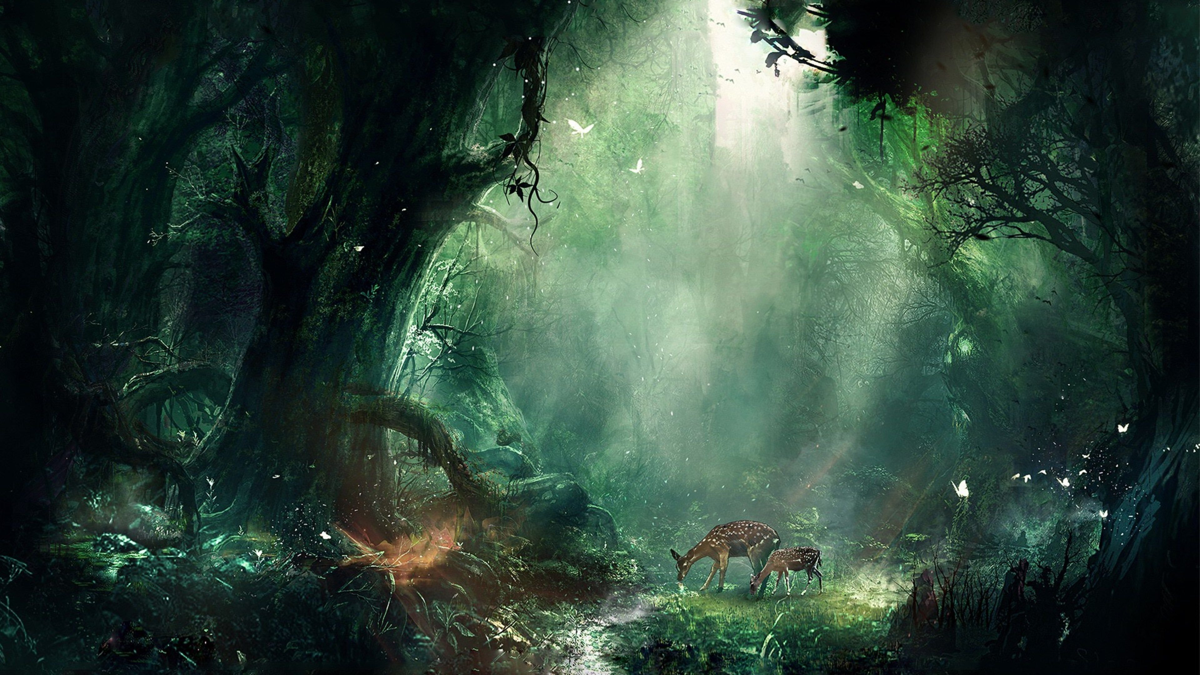 Jungle Wallpapers Posted By Ryan Anderson