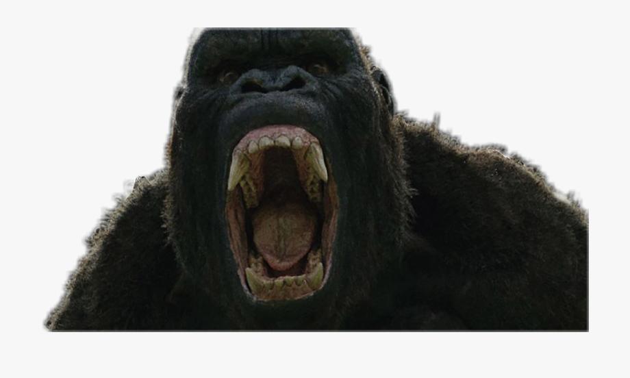 Angry King Kong Png