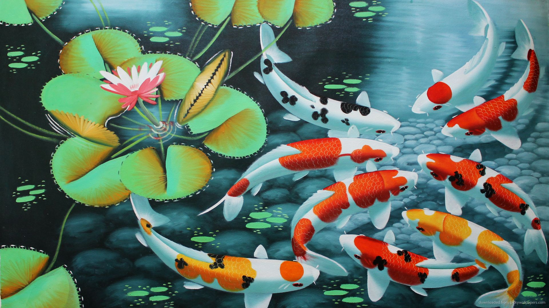 Koi Wallpaper Posted By Ethan Anderson