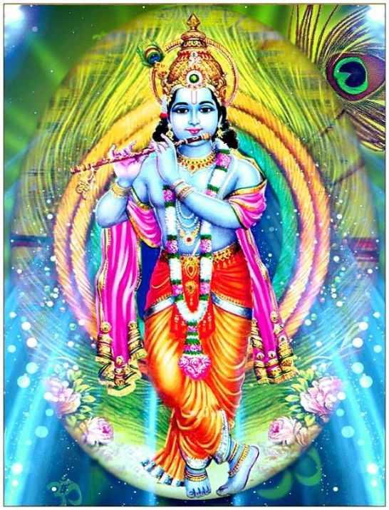 Whatsapp DP Cow Wallpaper Bal Mobile Phone Krishna