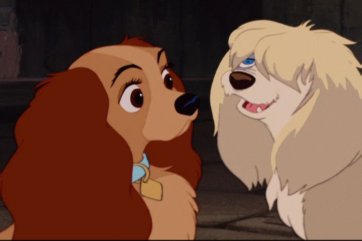 Lady And The Tramp Hd Posted By Ryan Anderson