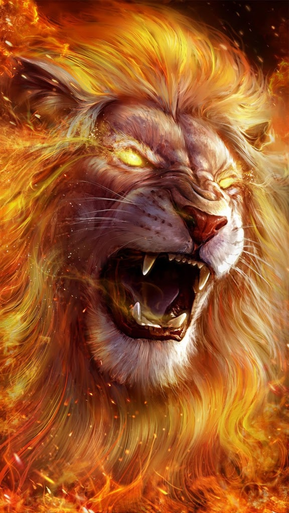 Download Lion Wallpaper High quality wallpaper for free