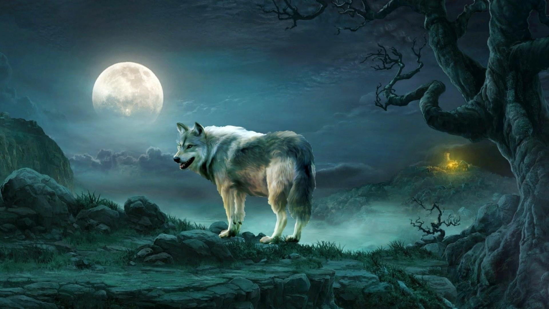 wolf wallpaper free posted by ethan walker