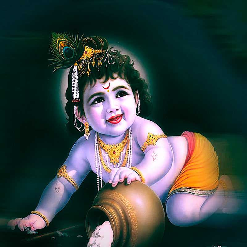 Cute Krishna Hd Wallpaper Lord Krishna Wallpaper Hd Free