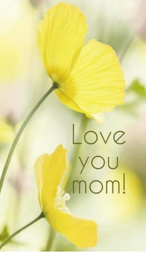 Love U Mom Images Posted By Zoey Peltier