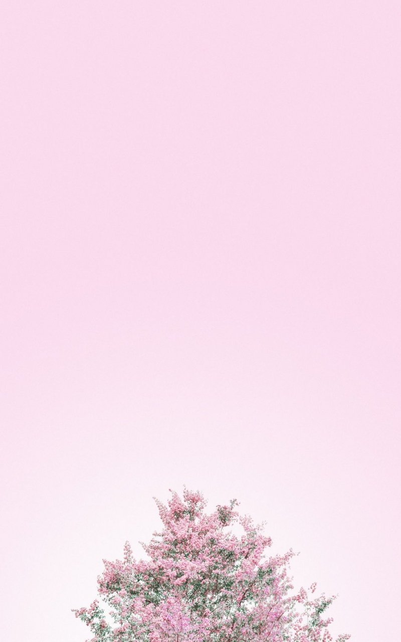 Free download Minimalist Aesthetic Wallpapers Top Minimalist