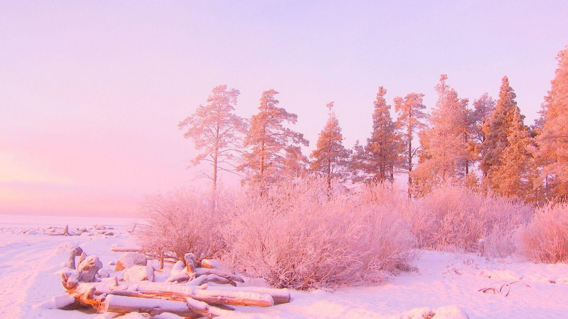 Hd Light Pink Backgrounds Background Photos 1080p Smart