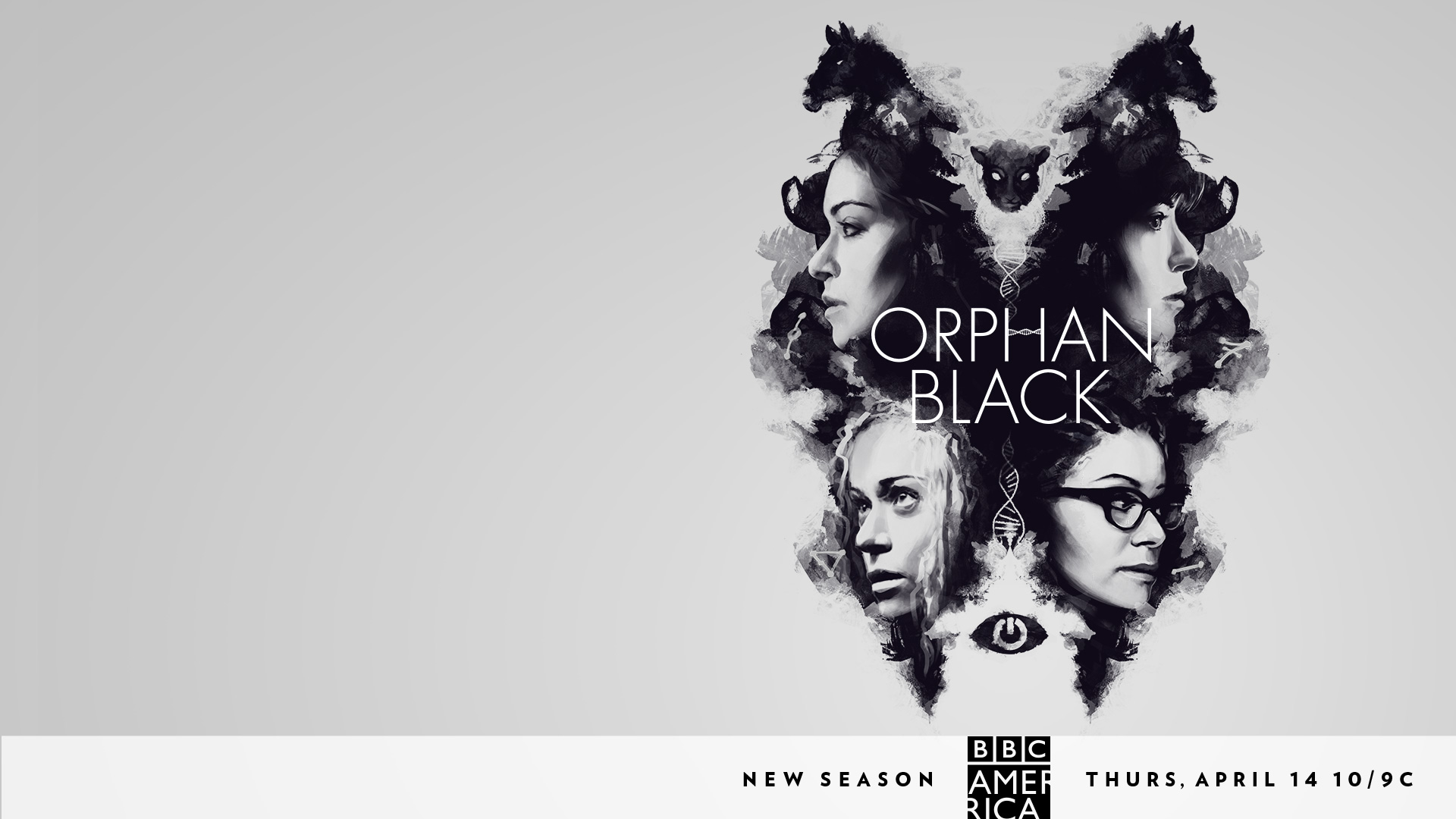 Orphan Black Wallpaper Posted By Zoey Thompson