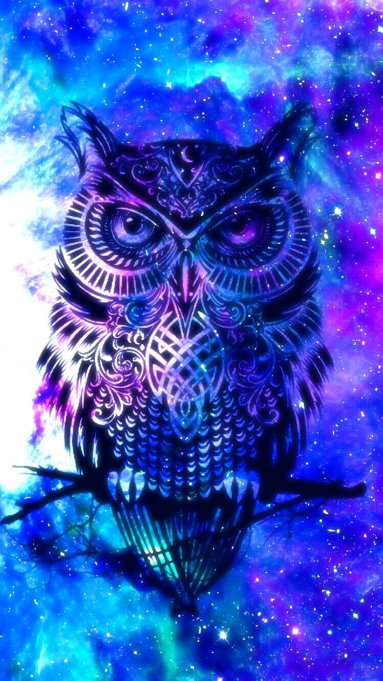Owl Wallpaper For Android Posted By Michelle Sellers