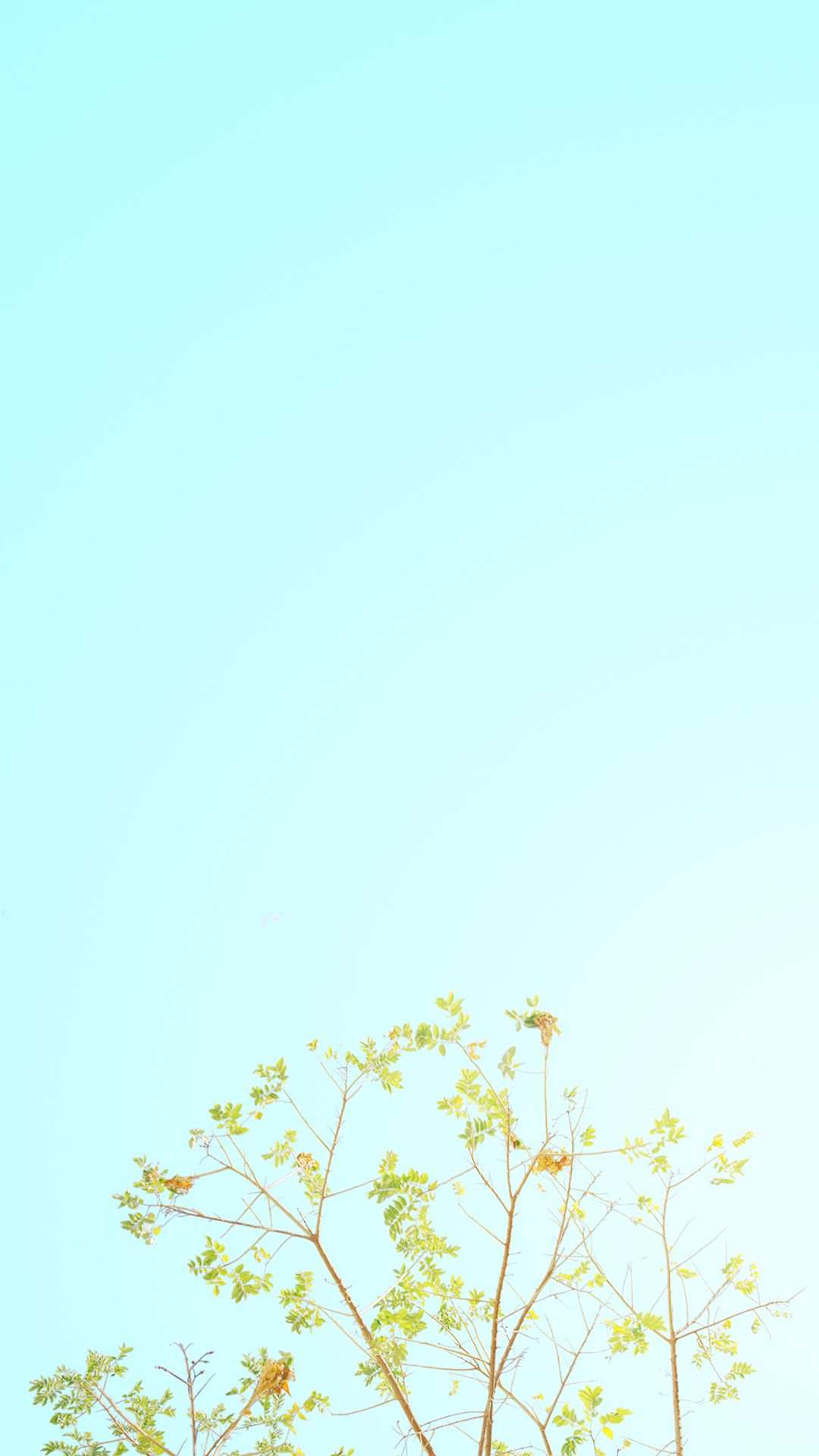 Pastel Minimalist Wallpaper Posted By Zoey Simpson