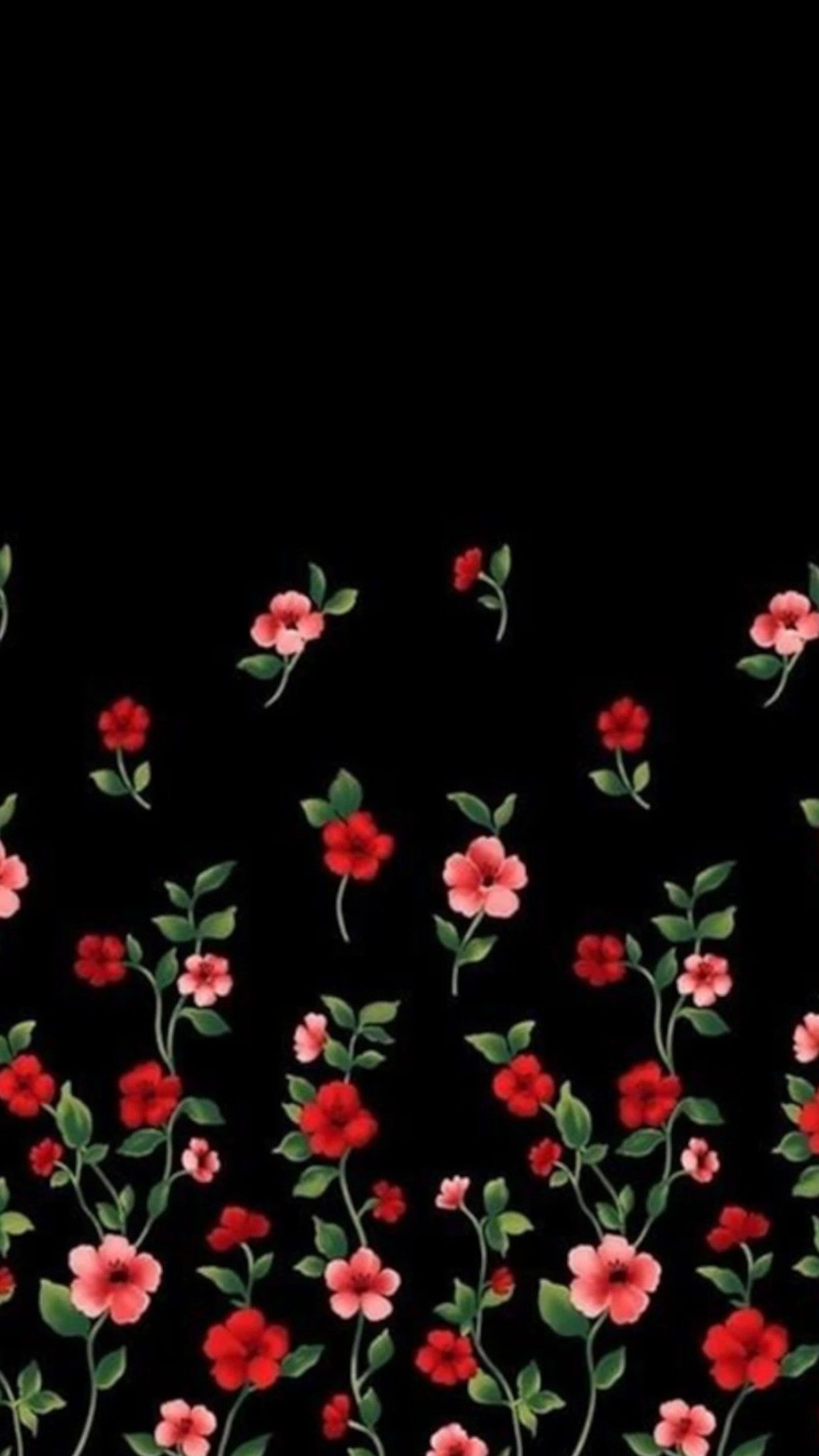 Pink And Black Flower Wallpapers
