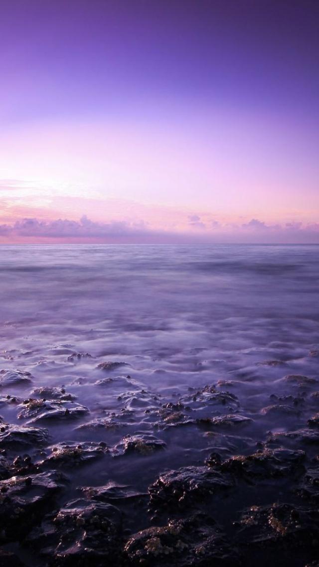 purple ocean Magdalene project.org