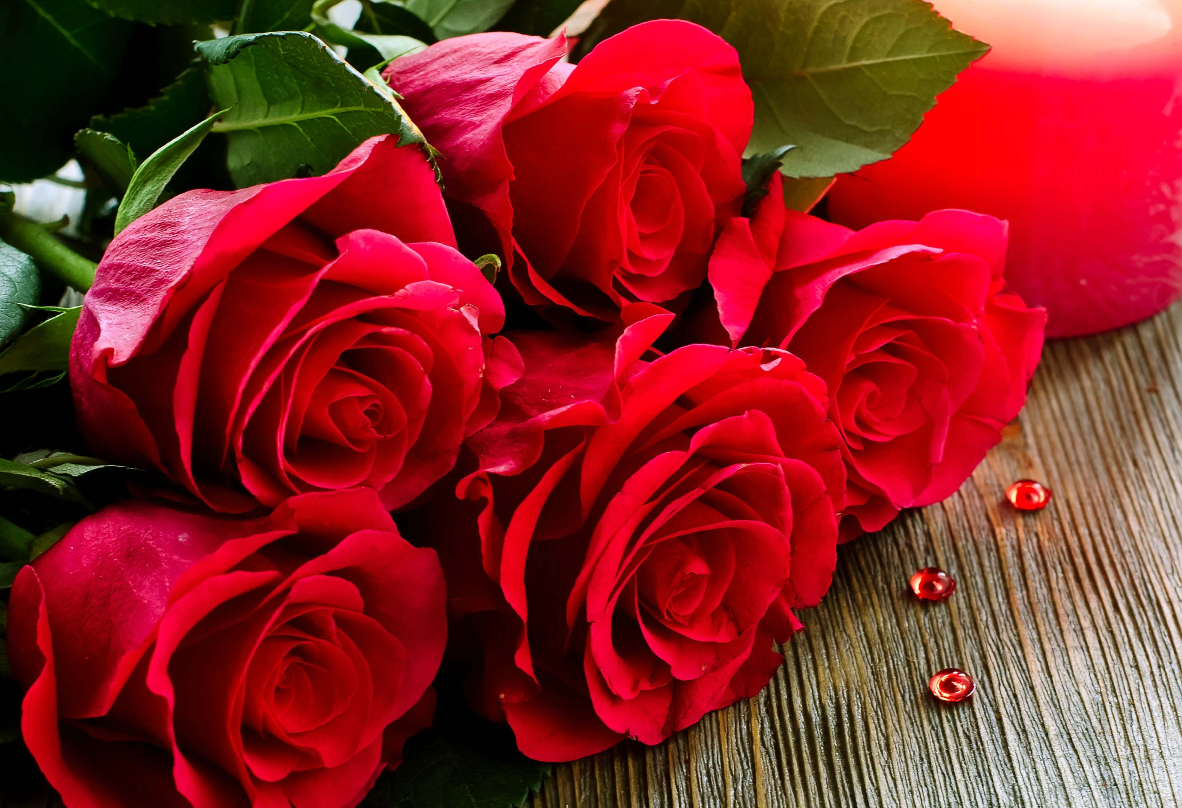 Red Roses Wallpapers Hd Posted By Sarah Simpson