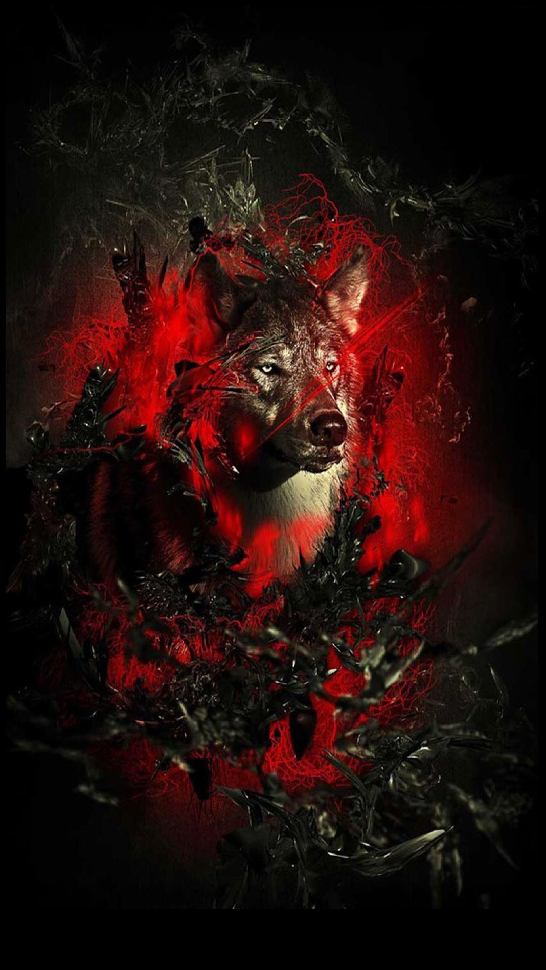 Red Wolf Wallpaper Posted By Ryan Sellers