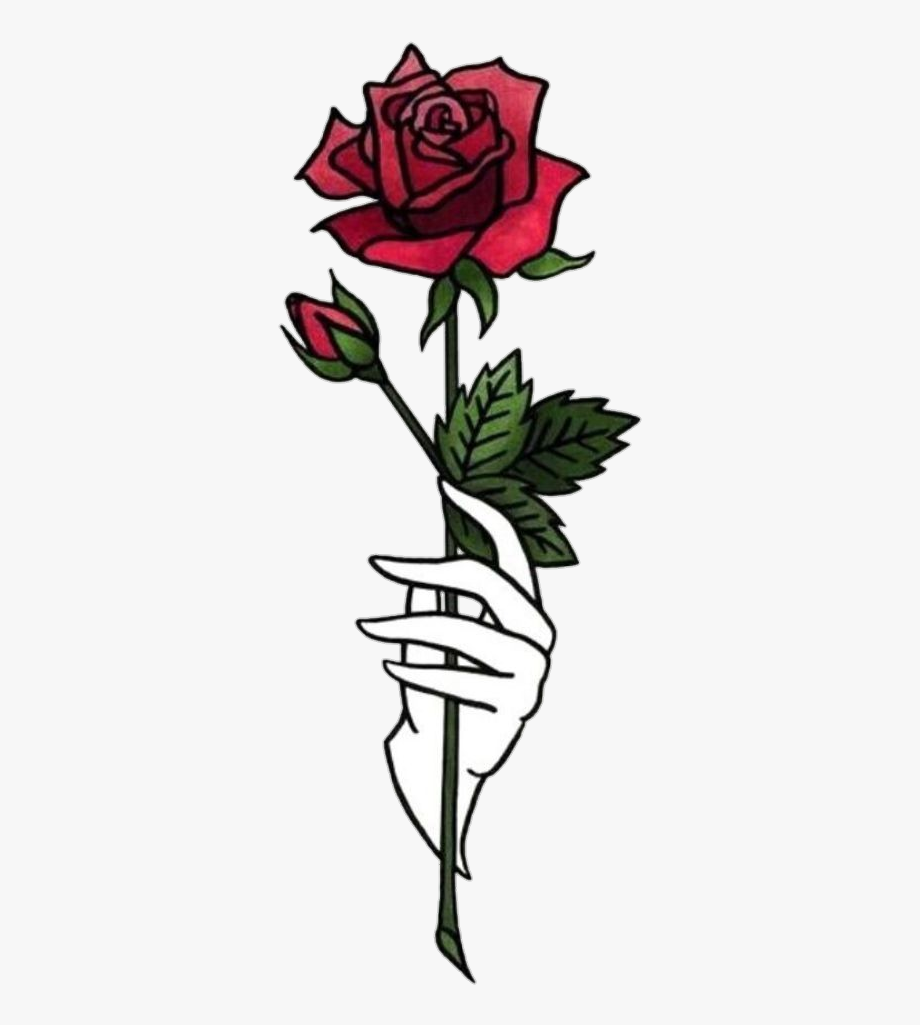 Rose Tumblr Wallpaper Posted By Ethan Tremblay