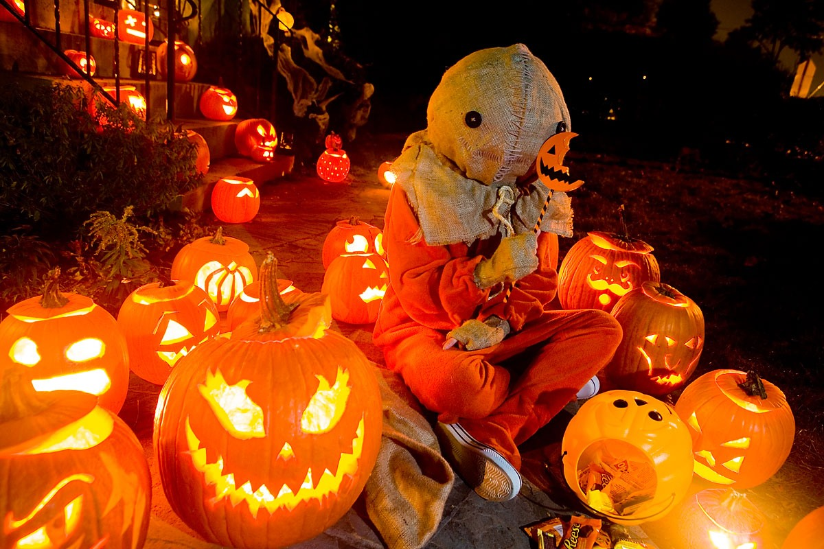 Sam Trick R Treat Wallpaper Posted By Christopher Sellers