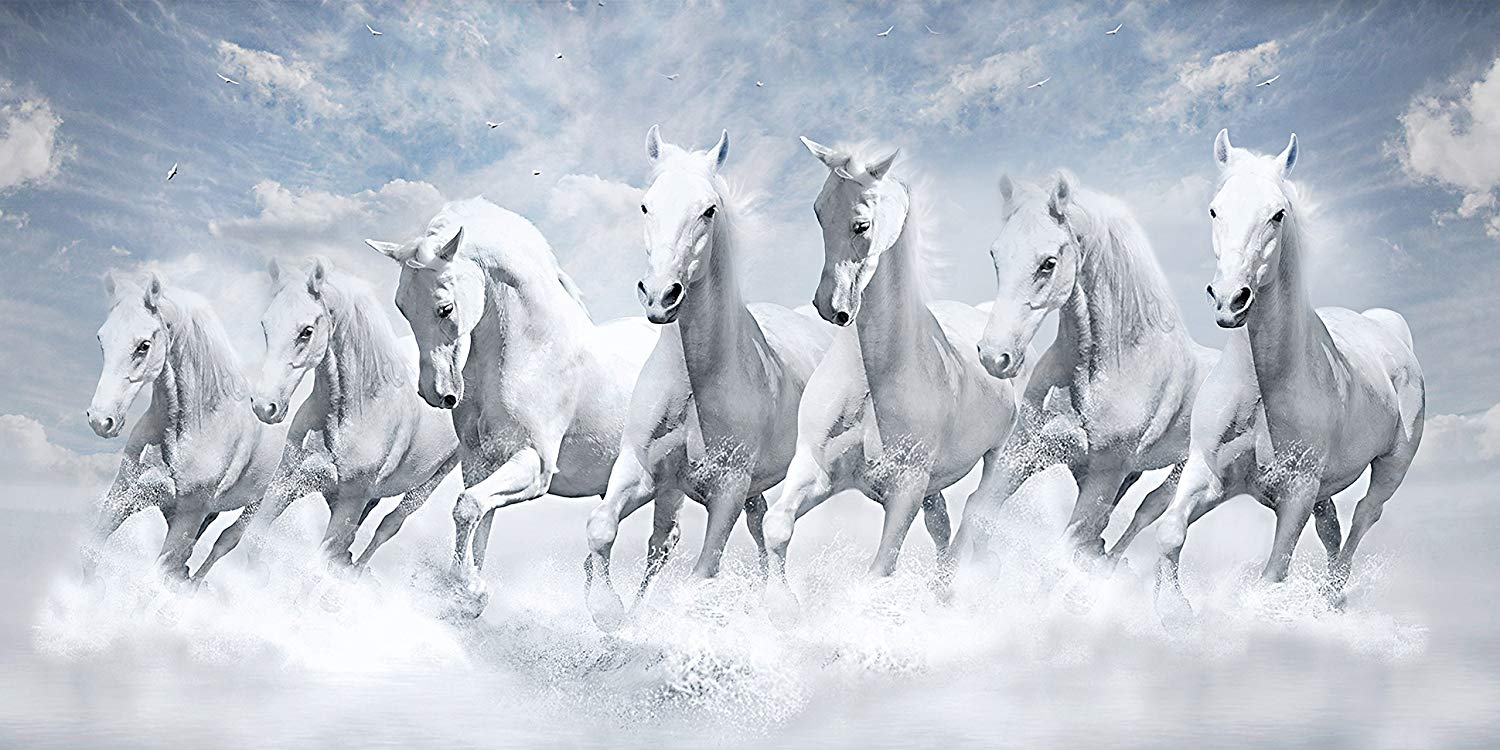 Seven Horses Wallpapers Posted By Michelle Anderson