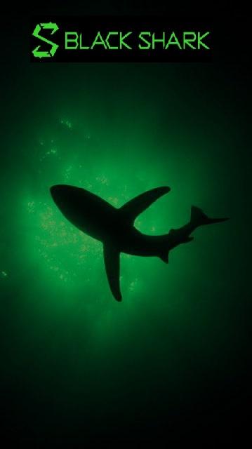 Custom dark black shark wallpapers Black Shark Official Forum