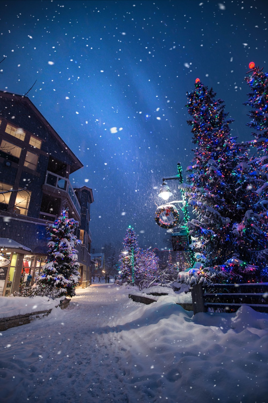 Snow Christmas Wallpaper Wallpapers Photos