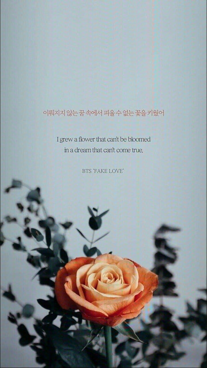 Fake Love, Bts, And Wallpaper Image Bts Song Lyrics Quotes