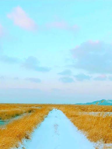 BTS Wallpapers Album on Imgur