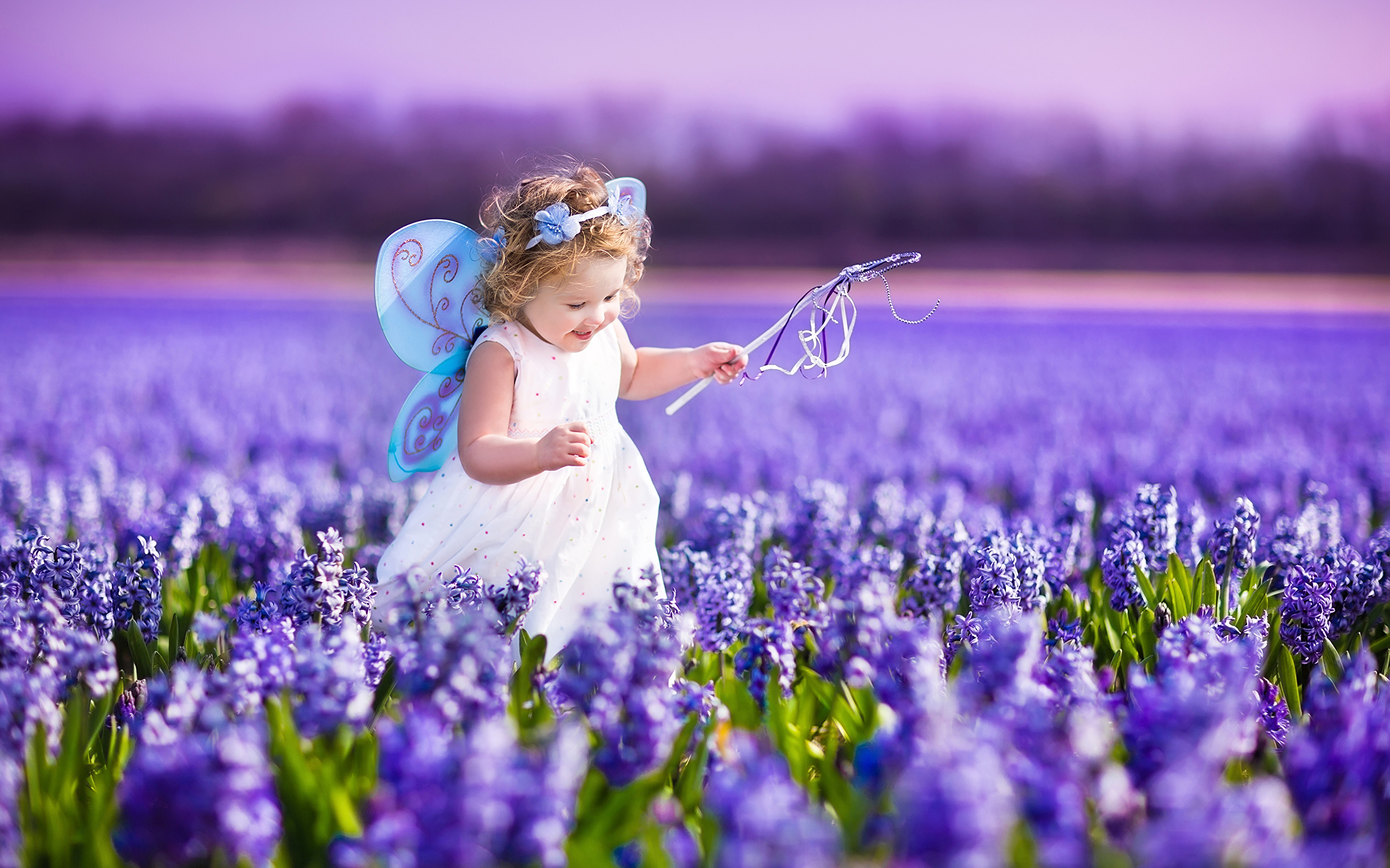 Spring Flowers And Butterflies Wallpaper Posted By Zoey Peltier