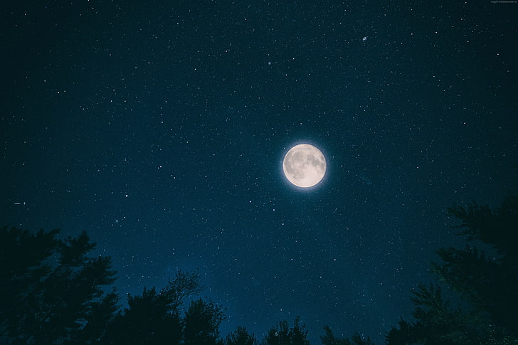 Stars Night Sky Wallpaper Posted By Ryan Peltier