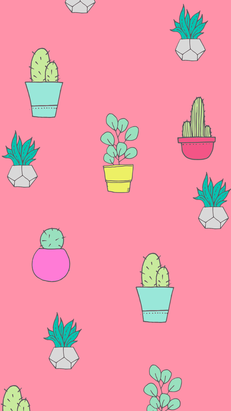 Succulent Phone Wallpaper Posted By Zoey Walker