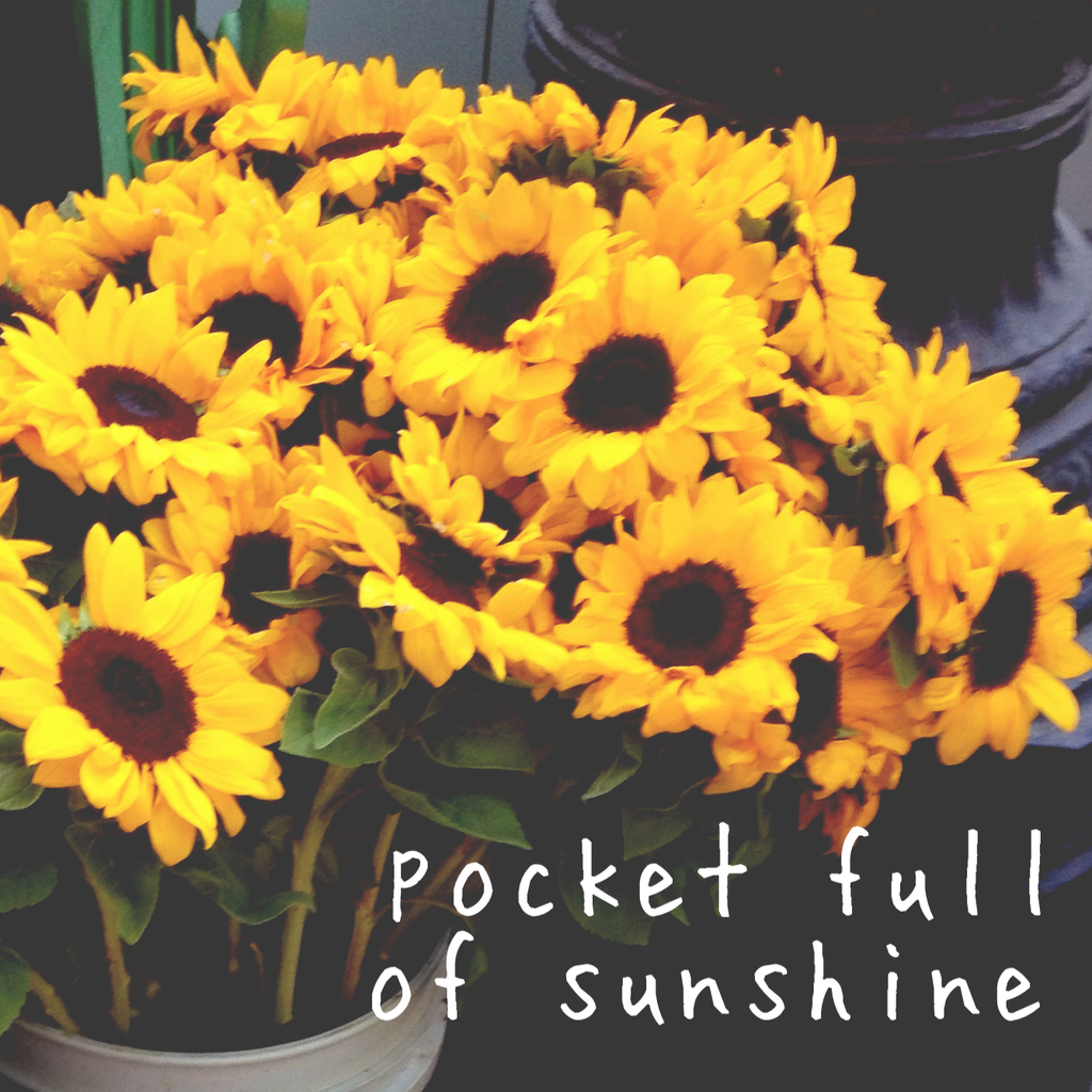 Sunflower Quotes Tumblr Posted By Christopher Cunningham