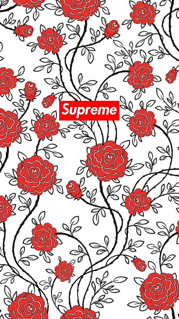 Supreme Rose Wallpapers Posted By Zoey Cunningham