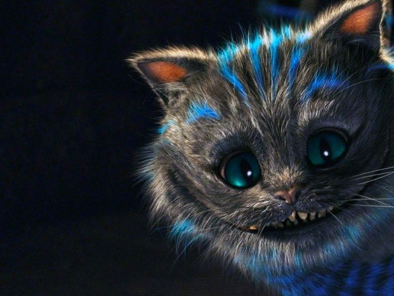 The Cheshire Cat Wallpaper Posted By Ryan Mercado