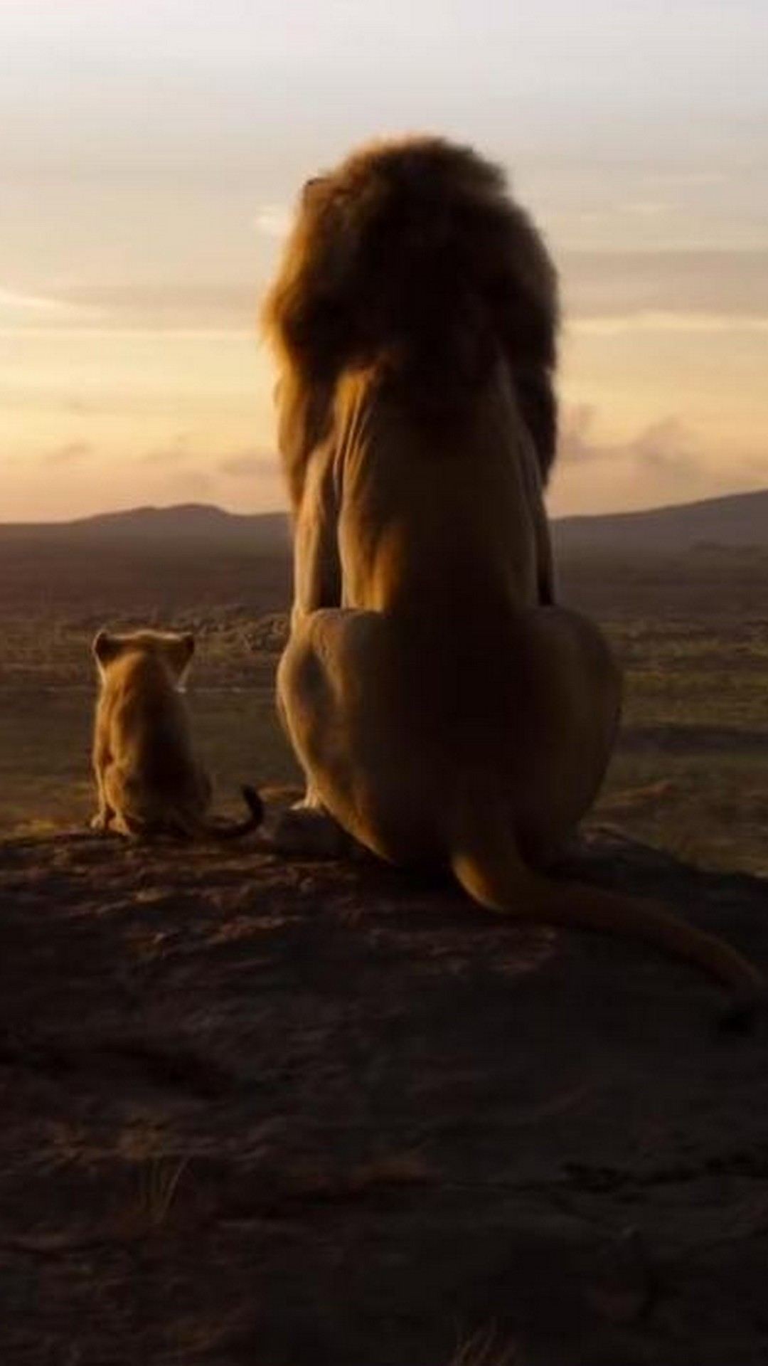 The Lion King 2019 Poster Movie 2019 Movie Poster Wallpaper HD