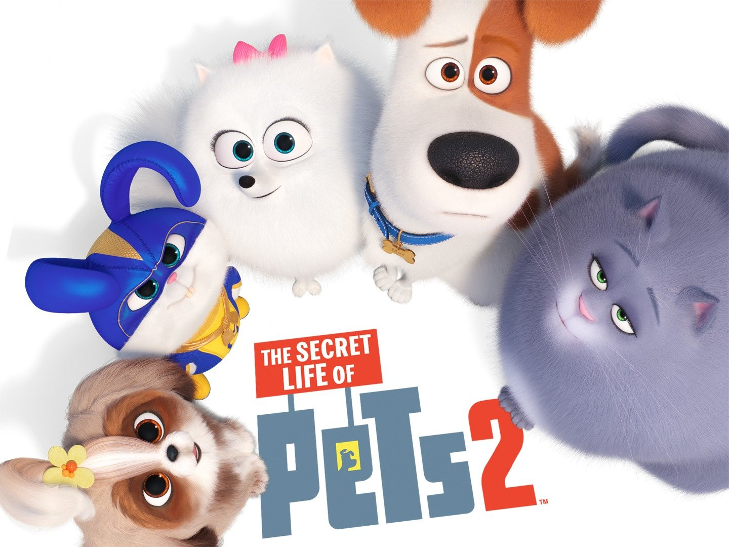 The Secret Life Of Pets 2 Wallpapers Posted By Zoey Thompson