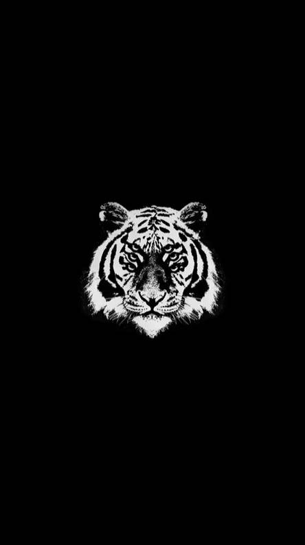 Tiger Logo Wallpapers Posted By Ryan Tremblay