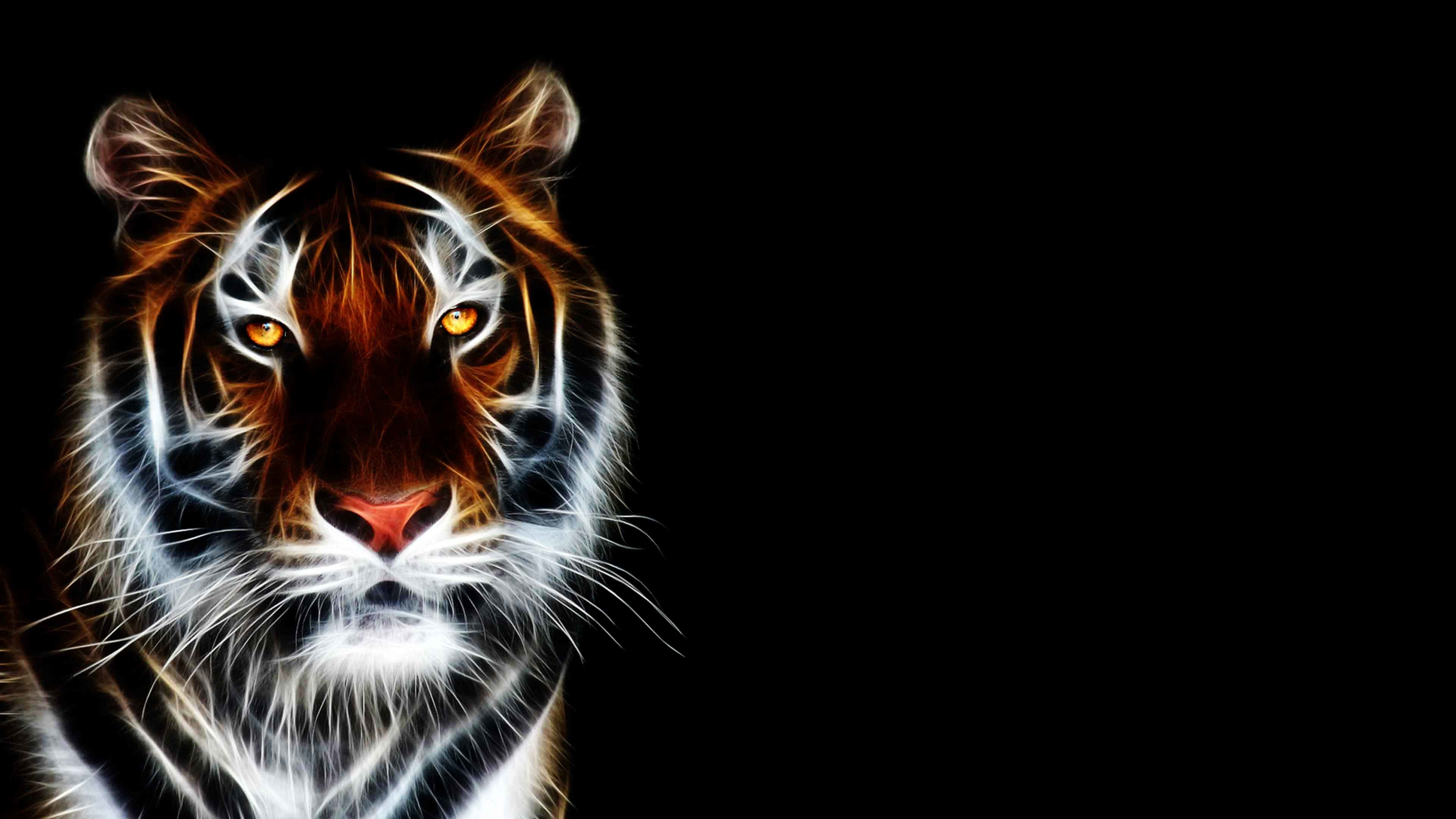 Tiger Wallpaper 3d Posted By Zoey Peltier