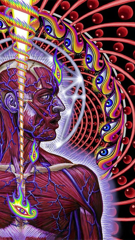 Tool Lateralus Wallpaper Posted By Samantha Cunningham