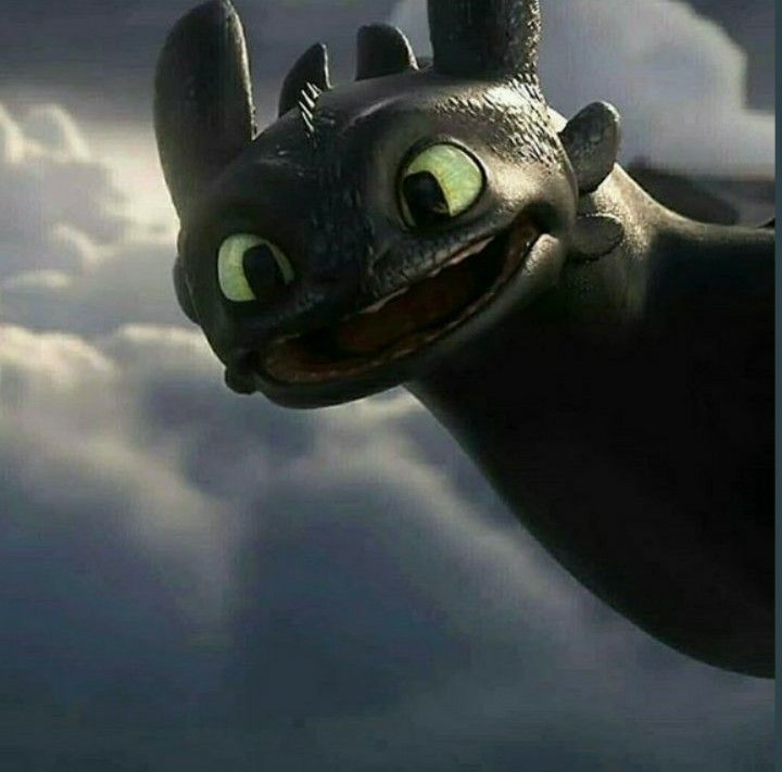 Toothless Smiling Posted By Sarah Sellers