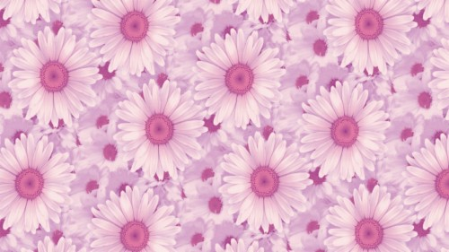 Tumblr Backgrounds Pink Posted By Ryan Peltier