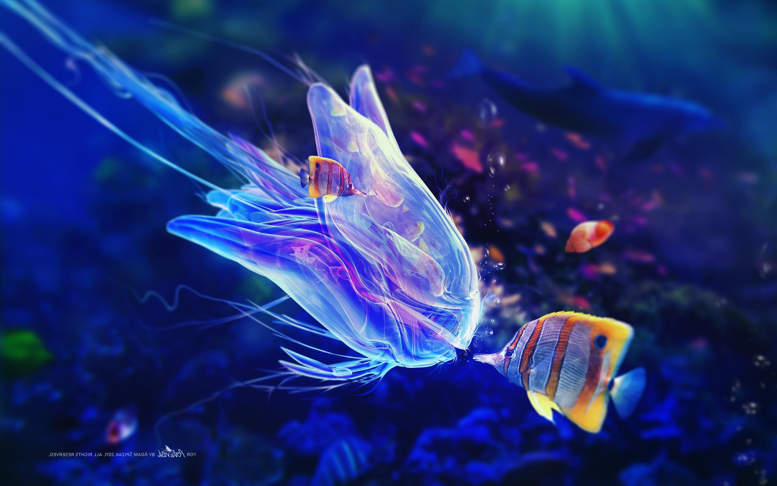 Fantasy Underwater Wallpaper Hd Wallpapers Ocean Life Hd